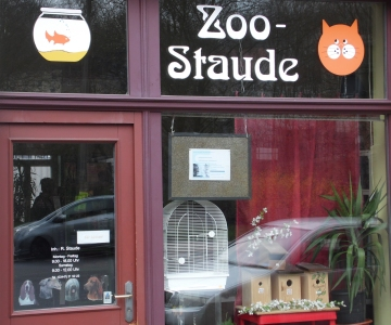 zoo_staude